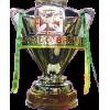 巴西杯冠军