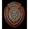 Gibraltar Champion