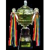 Moldovan supercup winner