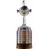 南美解放者杯冠军