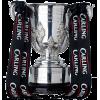英格兰联赛杯冠军