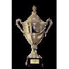 爱沙尼亚超级杯冠军